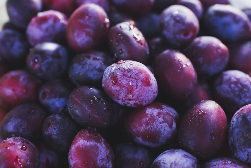 La prune : un fruit miracle pour la santé digestive et cardiovasculaire