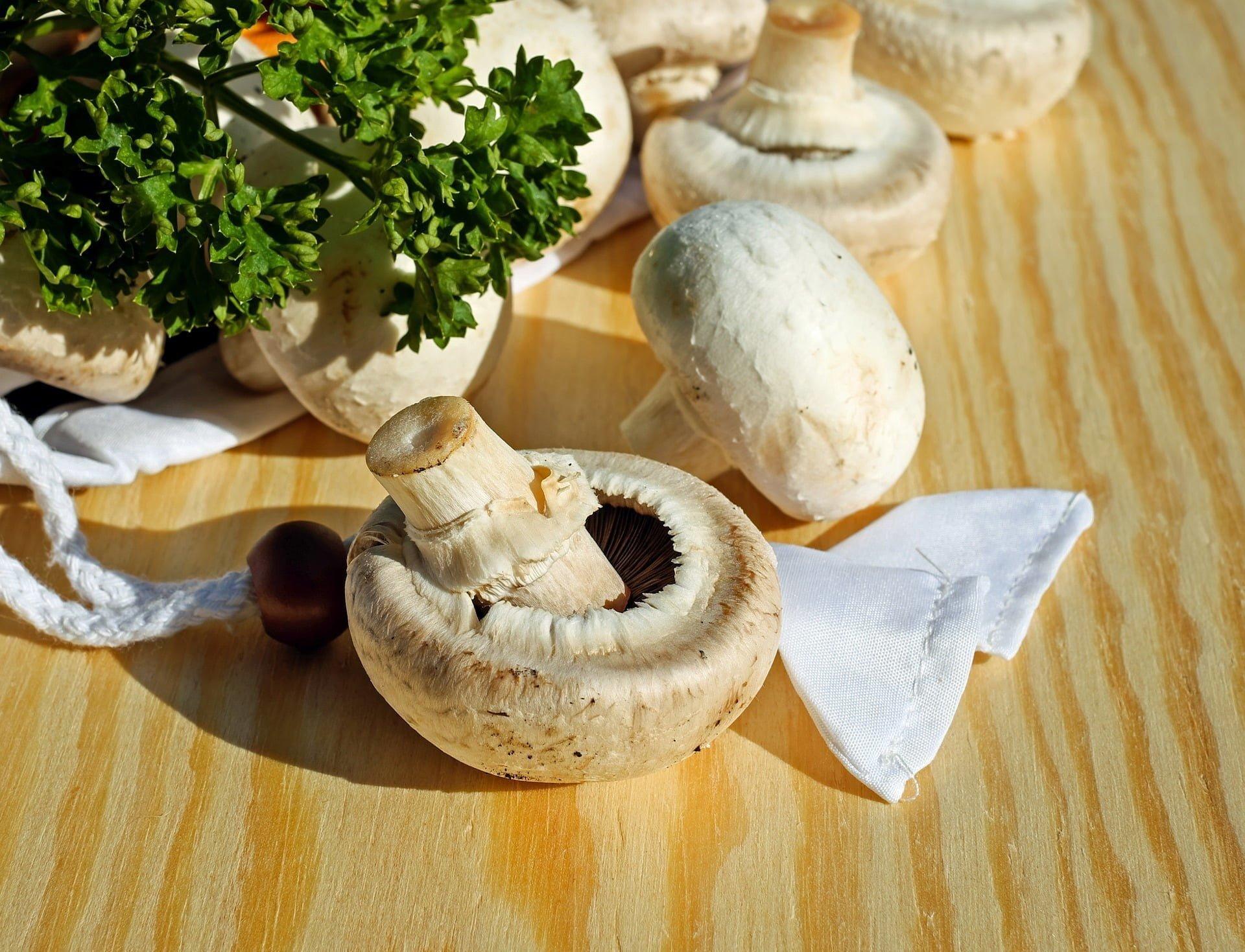 régime champignon