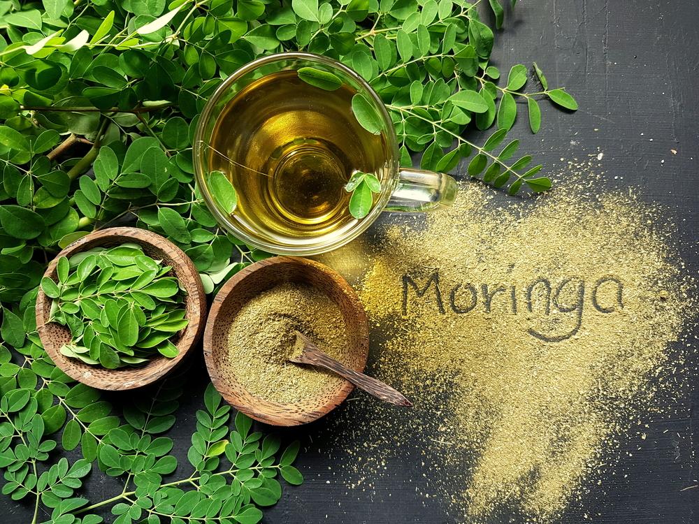 Moringa: Tout savoir sur cet arbre magique