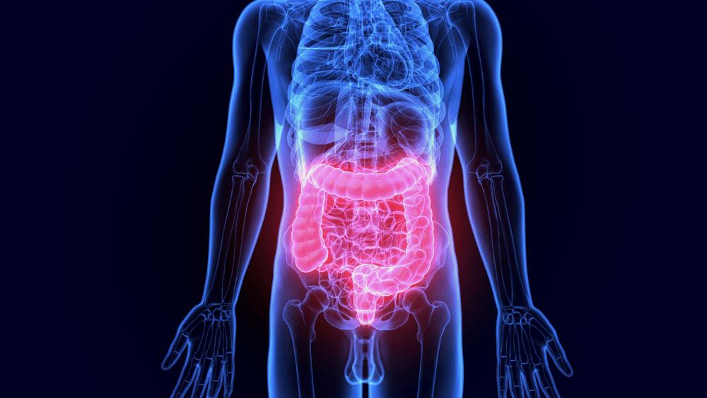 améliorer la digestion