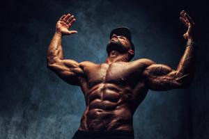 masse musculaire et testostérone