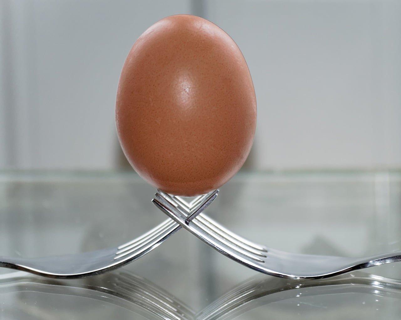 régime œuf