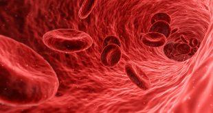 régime groupe sanguin