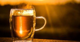 thé rooibos
