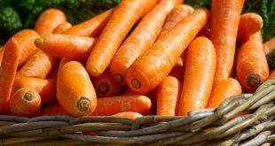 régime carotte