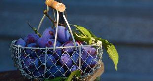 régime prune