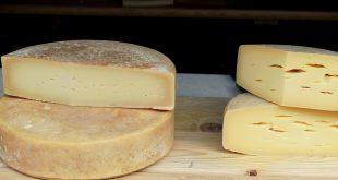 bienfaits du fromage