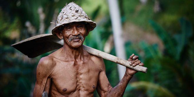 Comment remédier à la dénutrition des personnes âgées?