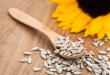 Graines de tournesol : Valeur nutritive, bienfaits et propriétés