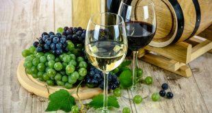 le vin pour perdre du poids