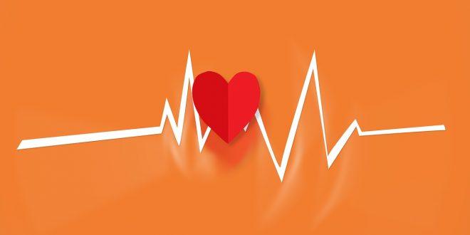 La cardio : 7 types pour maigrir efficacement