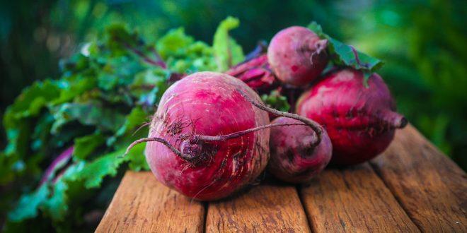 La betterave : un excellent antioxydant pour améliorer votre santé