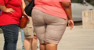 l'obésité maladies