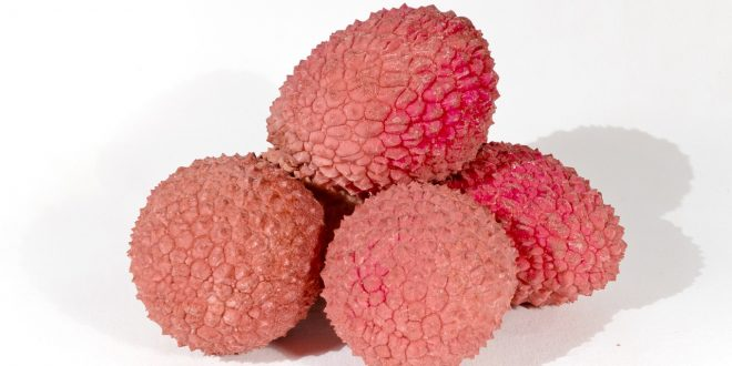 Litchi – un fruit énergétique à consommer régulièrement