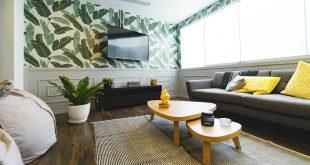 plantes vertes pour purifier l'air