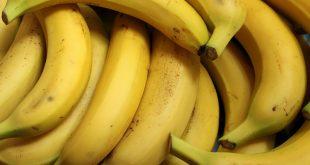 fruit riche en nutriments