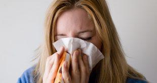grippe saisonnière en France