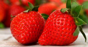 les bienfaits des fraises sur la santé