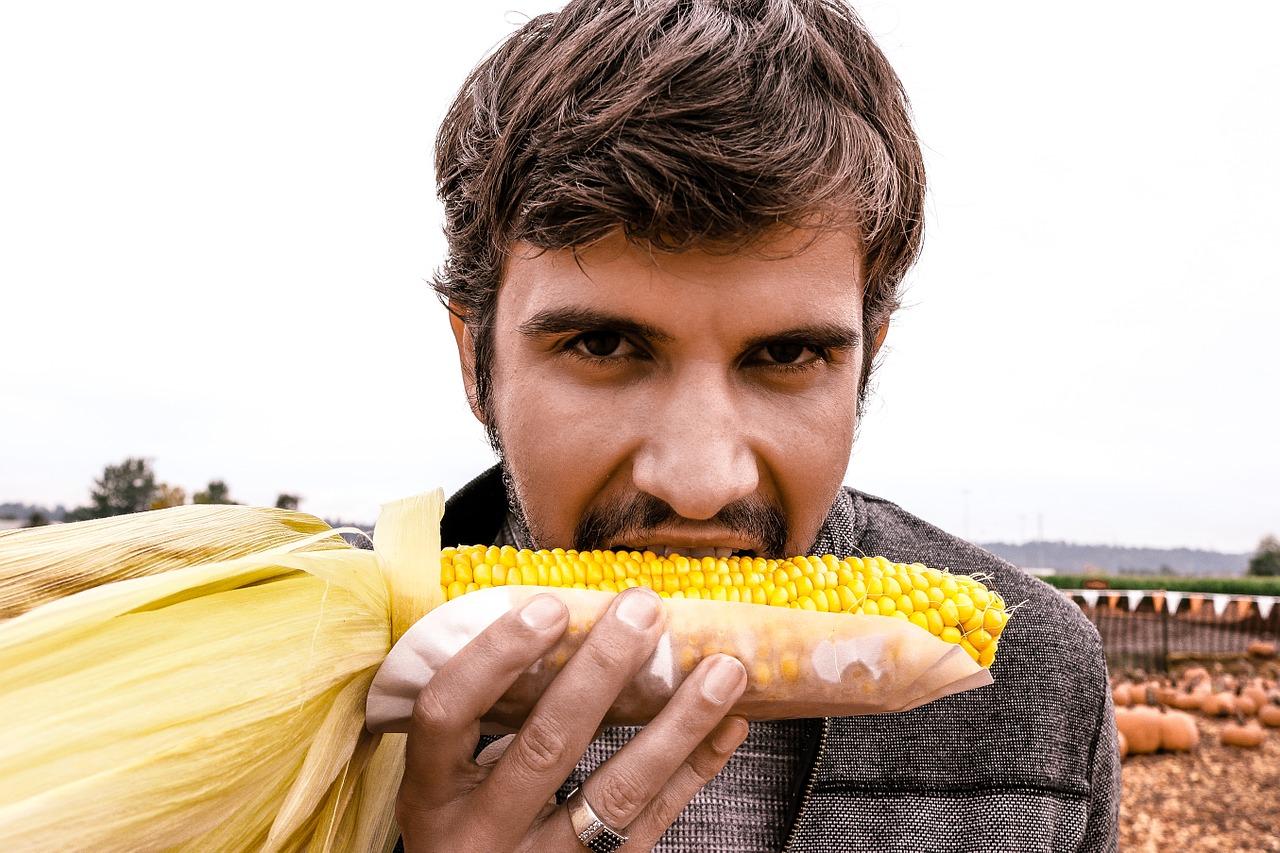 raisons de manger du maïs