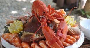 atouts santé des fruits de mer