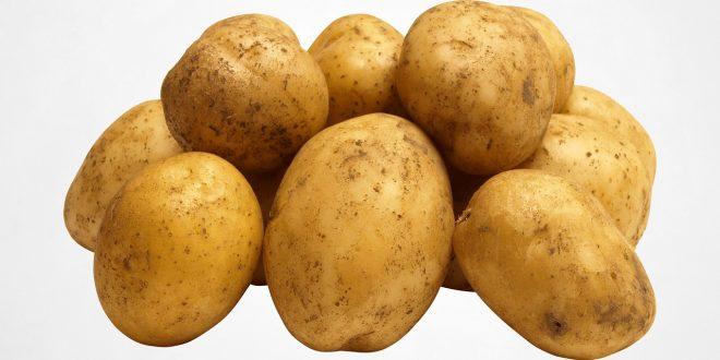 La pomme de terre : quels sont ses vertus santé