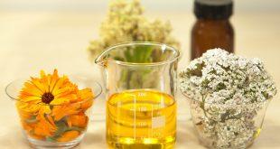 les bienfaits surprenants de l'huile de jojoba sur la peau et les cheveux